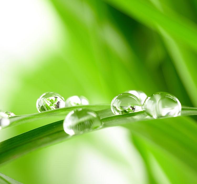 Nuestras lavanderías WebiaProd son respetuosas con el medio ambiente